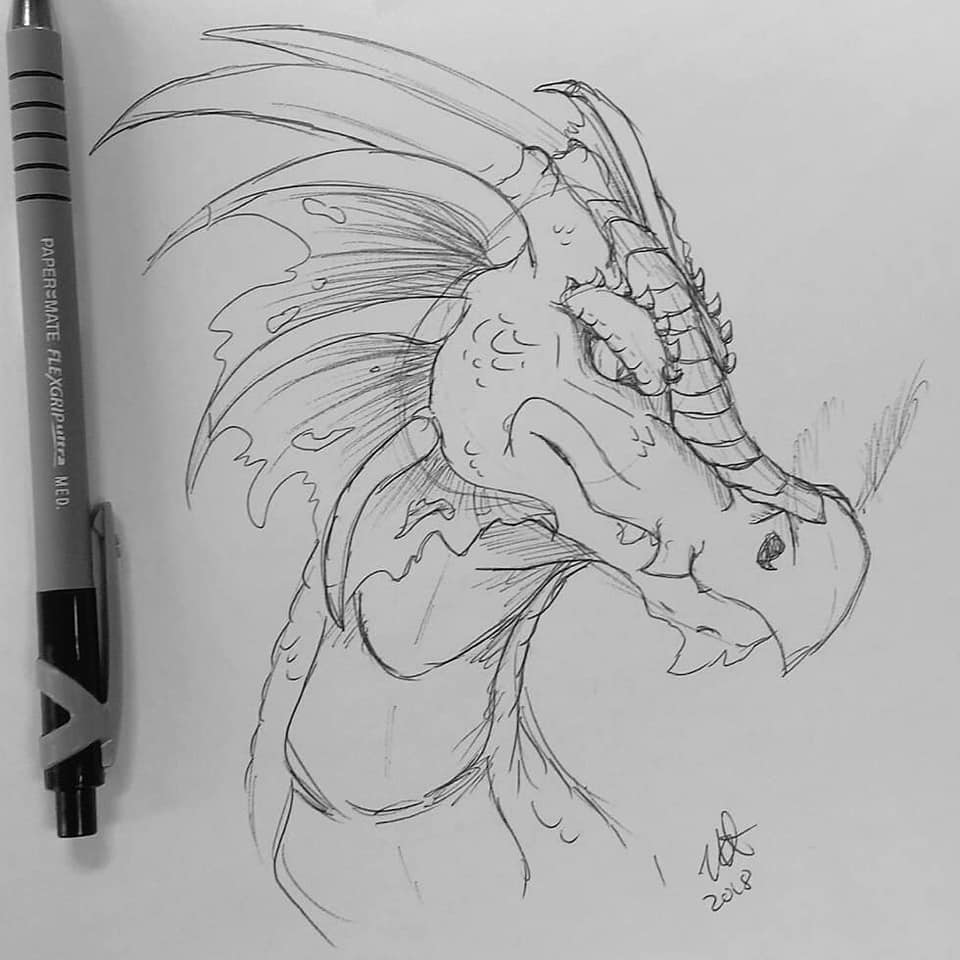 A pencil sketch of a feral dragon's head.