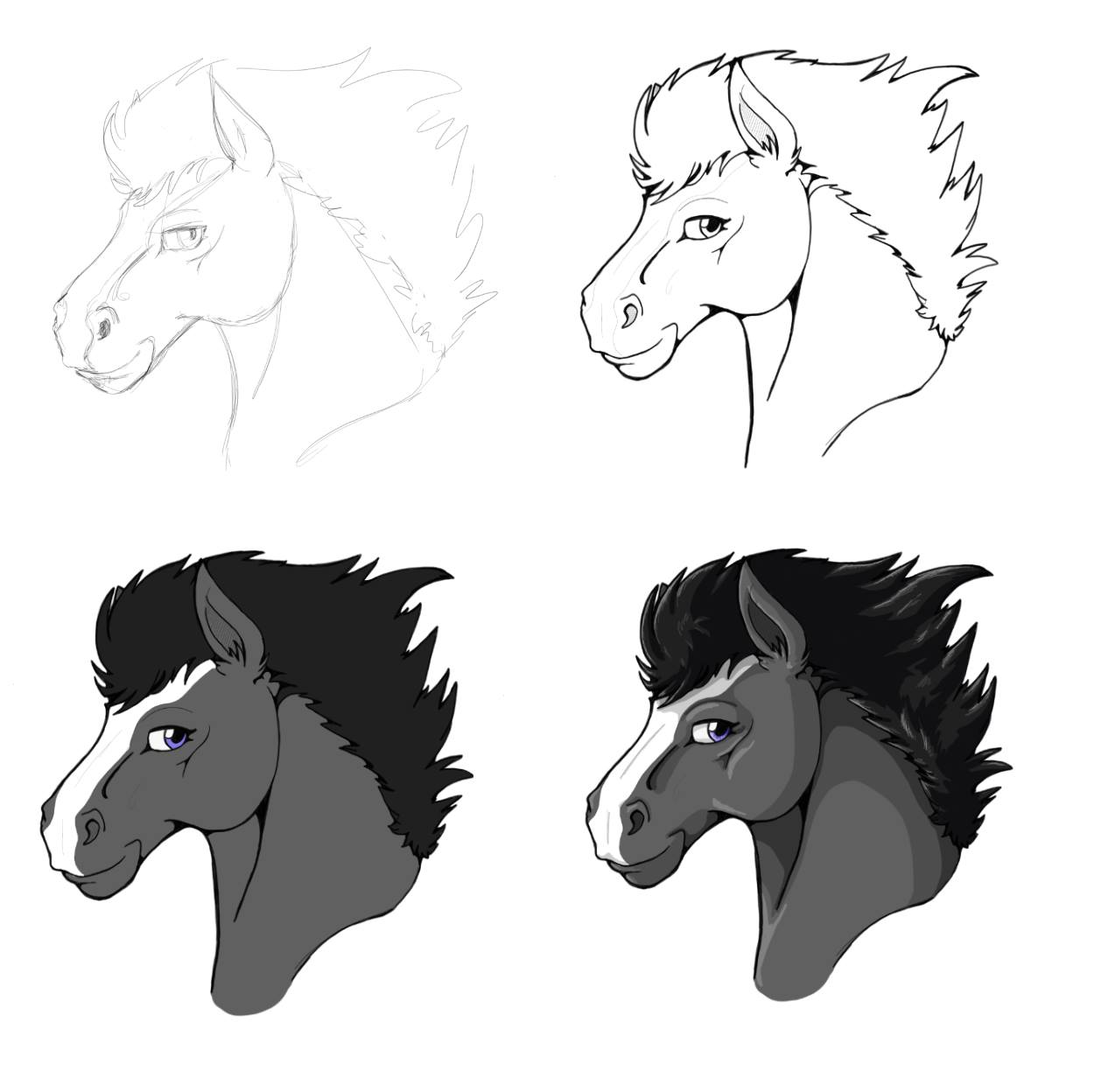 An illustration of a horse's head in four stages of completion: Sketch, linework, flat colour, and with shading.